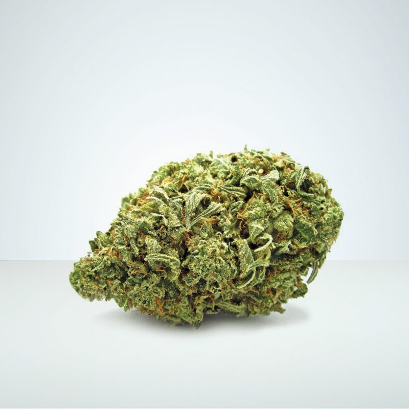 CBD Buds Wholesale Europe