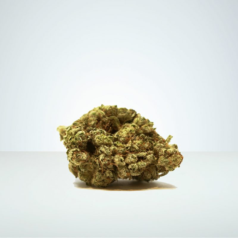 CBD buds Wholesale Royal Moby